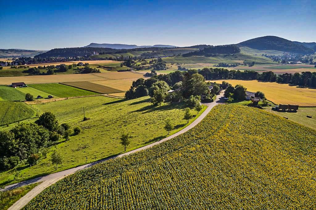 Blomberghof Landschaft Umgebung